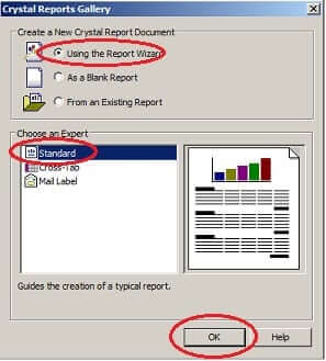 Create Your First Crystal Report - Crystal Report Gallery