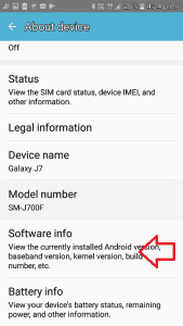 Tap on Software Info Option
